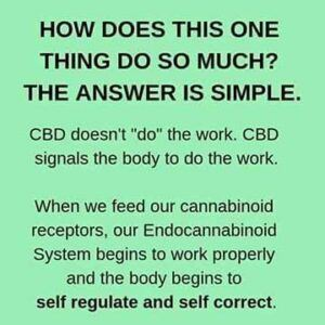 CBD doesn't do the work. It signals the body to do the work.