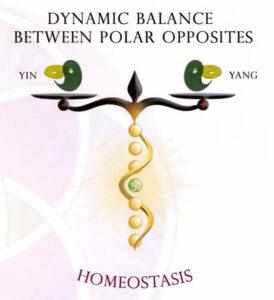 Homeostasis is a Dynamic Balance between polar opposites (Yin and Yang)